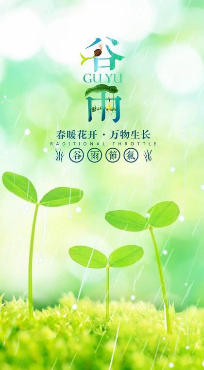 春暖花开,万物生长,雨中的嫩芽清新谷雨节气唯美手机壁纸图片