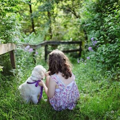 可爱小狗狗,女孩,女人,与人和谐相处的宠物狗狗摄影美图