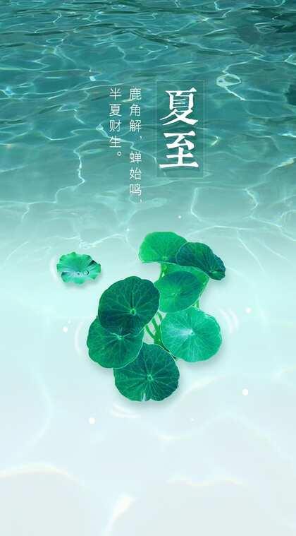 夏至有雨,仓里有米,小清新绿色植物系列夏至节气壁纸图片