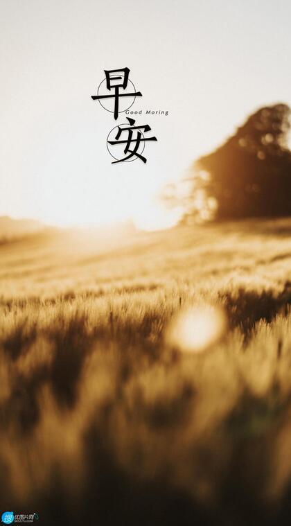 早安文字图片,唯美清新的绿叶,草地,海边,气球等早安手机壁纸图片