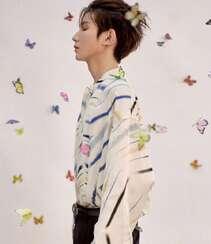 被蝴蝶环绕的少年,王源清新帅气白色印花衬衫穿着写真图片组图5