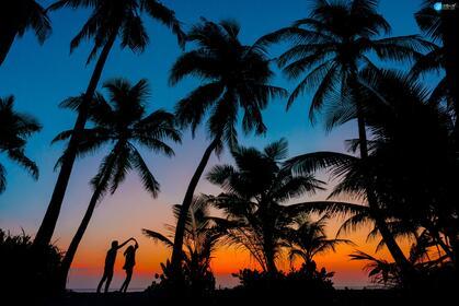 傍晚,夕阳下,一对在海边椰树林下跳舞的浪漫情侣身影唯美桌面壁纸
