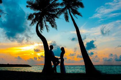黄昏下的海边椰树林,一对手拿手的恩爱情侣唯美桌面壁纸图片