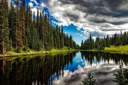 多云的森系天空,湖边长满了针叶树,以及平静的湖水唯美高清壁纸图片